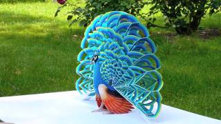 getlinkyoutube.com-Paper Pop-Up Peacock