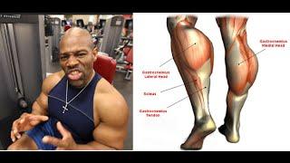 getlinkyoutube.com-How to Grow Calf Muscles #LIFT4LIFE