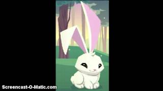 getlinkyoutube.com-Animal Jam Creepypasta- The Lonely Rabbit