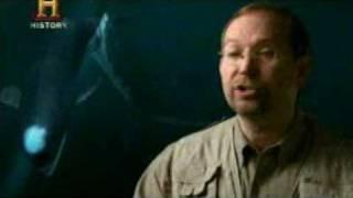 getlinkyoutube.com-Mundo Jurásico - Megalodon (Tiburón Monstruo Gigante) - Parte 6 de 7