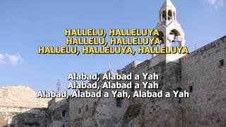 getlinkyoutube.com-Hallelu et Adonai - Barry & Batya Segal - Hebreo/Español
