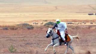 getlinkyoutube.com-Rahaba Chaoui