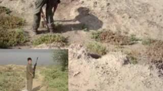 getlinkyoutube.com-الصيد في العراق