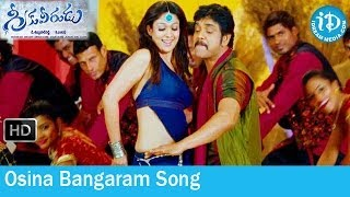 Greeku Veerudu Movie Songs - Osina Bangaram Song - Nagarjuna - Nayantara - S Thaman Songs