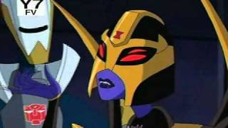 Blackarachnia's Best Moments