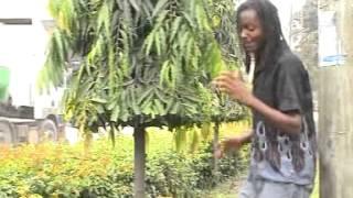 ALPHONCE KIOKO   MBAA NZENGE 09