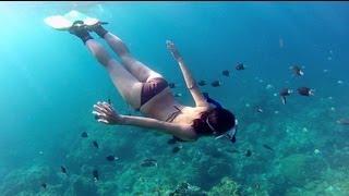 getlinkyoutube.com-Snorkeling Green Island