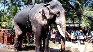 getlinkyoutube.com-Thechikkottukkavu Ramachandren