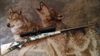 getlinkyoutube.com-Krylon Hydro Dip Winter Camo for factory rifle stocks