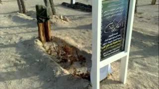 getlinkyoutube.com-مقطع الى السيد محمد الصافي باجر يسألونك وتتحاكم