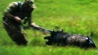 "getlinkyoutube.com-Bow Hunting Pigs ""Cranky Boars & Bows"""