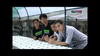 getlinkyoutube.com-การปลูกผักไฮโดรโปนิกส์ ตอนที่ 3 โดย ฟาร์มเกษตรอัจฉริยะ Fresh Ville Farm