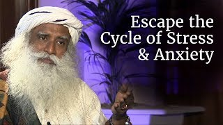 How to Escape the Cycle of Stress, Anxiety and Misery? - Sadhguru width=