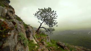 getlinkyoutube.com-Enya - Storms in Africa HD