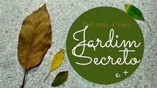 getlinkyoutube.com-Jardim Secreto - Secret Garden - Folhas com lápis de cor
