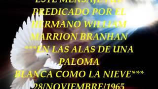 EN LAS ALAS DE UNA PALOMA BLANCA COMO LA NIEVE  28-NOVIEMBRE-1965