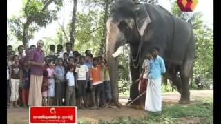 getlinkyoutube.com-Gurugi Anandapadmanabhan