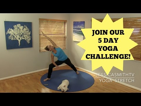 30 Minute Yoga Stretch + Join Our 5 Day Yoga Challenge!