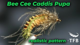 getlinkyoutube.com-Tying the Bee Cee Caddis pupa with Barry Ord Clarke