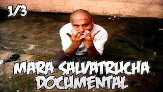getlinkyoutube.com-Mara Salvatrucha || Documental Español || 1/3