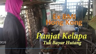 "getlinkyoutube.com-TKW ex Hongkong Pulang Dikejar Jurutagih. -- ""Panjat Pohon Kelapa"" !!"
