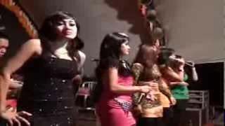 getlinkyoutube.com-OM.CAMELIA - Pria Idaman - All Artis