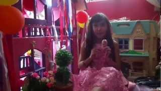 barbie's dream doll house...introducing barbie's dollhouse & warda nur
