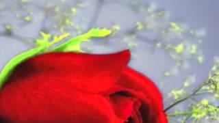 getlinkyoutube.com-ดูดวงความรักคนเกิดวันพฤหัส