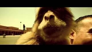 Dj Hamida - Medley 2014 Avant L'album