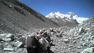 getlinkyoutube.com-Bill Burke 2012 Mt. Everest Video
