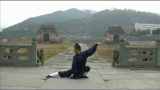 getlinkyoutube.com-Wudang Five Animals Qi Gong (武当五行气功)