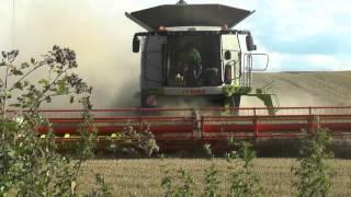 getlinkyoutube.com-Getreide Ernte mit Class LEXION 780 Erzeuger Genossenschaft Neumark eG in Umgebung nördlich von Weim