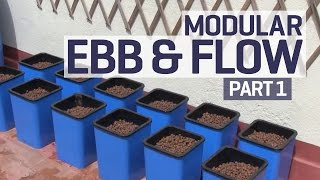 getlinkyoutube.com-How to set up an Ebb and Flow / Flood and Drain Hydroponics Growing System - PART 1 of 6