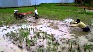 getlinkyoutube.com-Hebat, traktor capung di lahan rawa masih bisa jalan