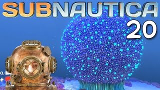"getlinkyoutube.com-Subnautica Gameplay Ep 20 - ""Kooshie Booshes!!!"" 1080p PC"