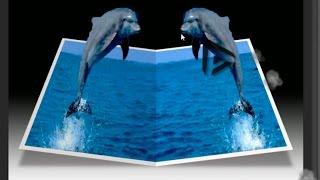 getlinkyoutube.com-Como crear el Efecto fuera de limites - Tutorial de Photoshop