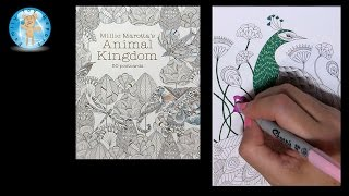 getlinkyoutube.com-Millie Marotta's Animal Kingdom 50 Postcards Adult Coloring Book Peacock - Family Toy Report