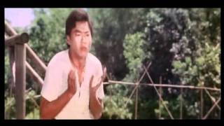 getlinkyoutube.com-Dance of the drunk mantis (Drunken master 2) Part 7