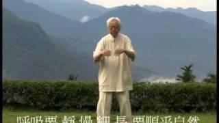 鄭子太極拳大師鞠鴻賓傳授行功心法 順呼吸.m4v