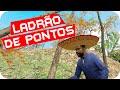 Garrys Mod: Hide And Seek - Ladrão de Pontos