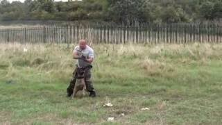 getlinkyoutube.com-Demonstration training crowd control / tactical cqb obedience with use of firearm 🔫🔫🔫