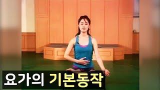getlinkyoutube.com-요가- 요가의 기본동작