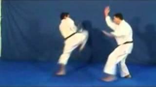 getlinkyoutube.com-Karate - Técnicas de Defesa pessoal