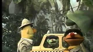 getlinkyoutube.com-Classic Sesame Street - Ernie and Bert at the jungle