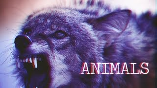 getlinkyoutube.com-» Multifandom | Animals