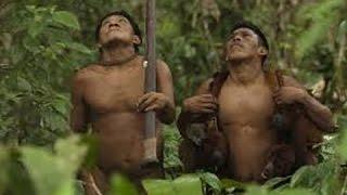 getlinkyoutube.com-hunt  monkeys and boar Yanomami indigenous in the Amazon jungle -Full Documentary 1983