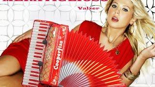 MERAVIGLIOSO gran Valzer per Fisarmonica e Orchestra Musica del M Stefano BERTONI