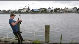 getlinkyoutube.com-Saltwater fishing from shore - How to catch stingrays and sharks