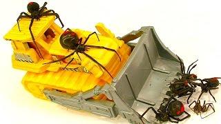getlinkyoutube.com-Horror Redback Spider Count On Kids Toys Giant Egg Sac Found