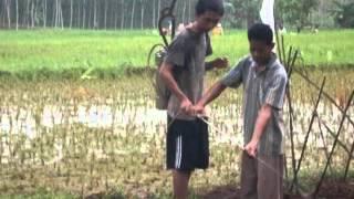 Kuliah Kerja Profesi KKP 2011 Rangkuman